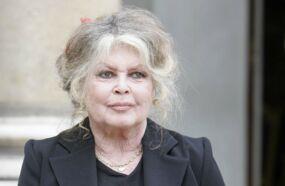 Héritage de Johnny Hallyday : Brigitte Bardot prend la défense de Laura et David et tacle Laeticia