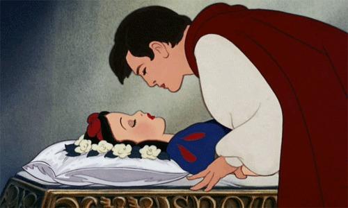 prince charmant belle au bois dormant